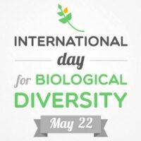 International Day For Biological Diversity 2021 - History, Date, Origin, Significance, Theme, Facts, Celebration, Wishes, Quotes, Slogans, Messages, Sms, Status, Whatsapp Status, Facebook Status, Images, Posters, Banners, Wallpapers, Insta Stories, Cards, Greetings, Drawing, Pics - What is Biodiversity? Importance of Biodiversity?