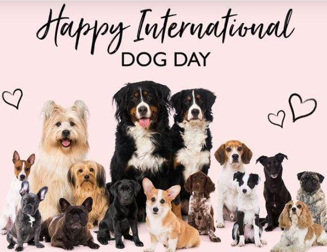 International Dogs Day 2021 – Date, History, Significance, Celebration, Theme, Facts, Images, Posters, Banners, Wishes, Quotes, Greetings, Messages, Memes, Drawings, Cards, Pictures, Status